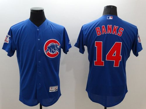Cubs #14 Ernie Banks Blue Flexbase Authentic Collection Stitched MLB Jersey